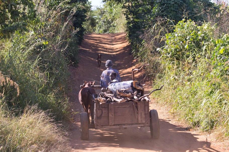 Oude manier van transport